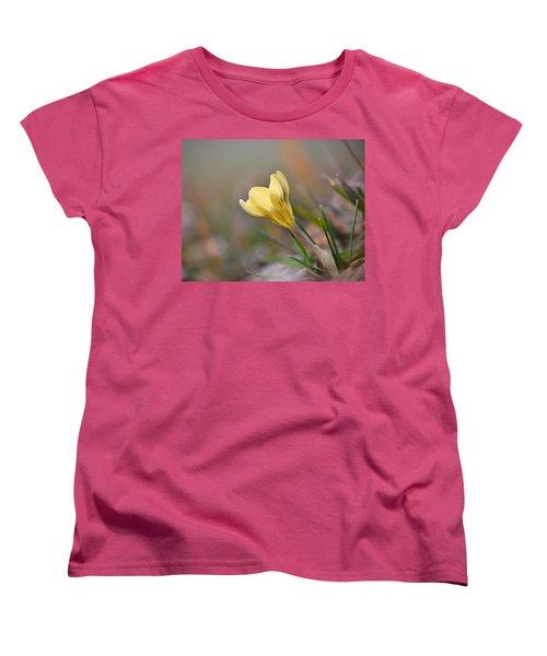 Yellow Crocus Women's T-Shirt (Standard Cut) by JD Grimes