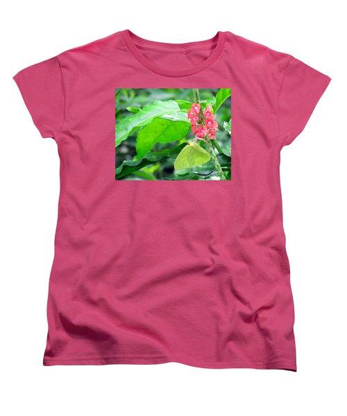Yellow Sulphur On Porterweed Women's T-Shirt (Standard Cut) by Judy Wanamaker