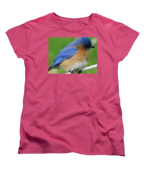 Blue Bird Women's T-Shirt (Standard Cut) by Betty Pieper