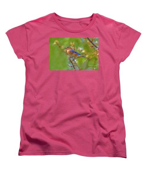Bluebird Women's T-Shirt (Standard Cut) by Marion Johnson