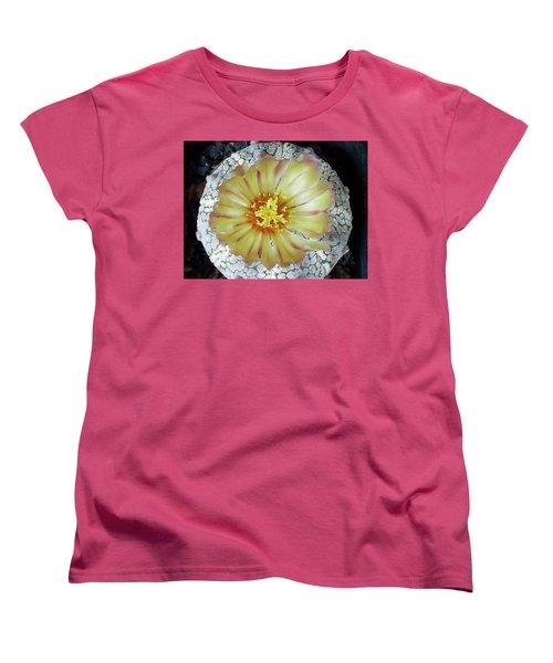 Cactus Flower 2 Women's T-Shirt (Standard Cut) by Selena Boron