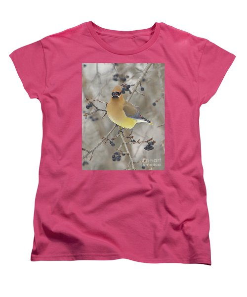 Cedar Wax Wing Women's T-Shirt (Standard Cut) by Robert Pearson