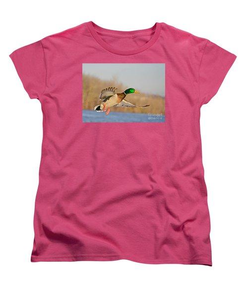 Fly By Women's T-Shirt (Standard Cut) by Robert Pearson