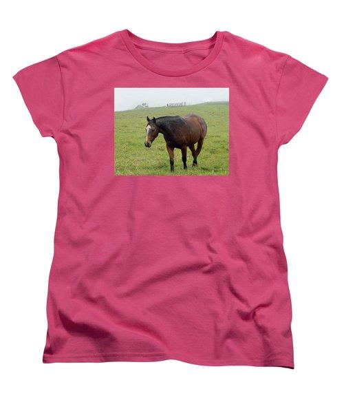 Horse In The Fog Women's T-Shirt (Standard Cut) by Pamela Walton