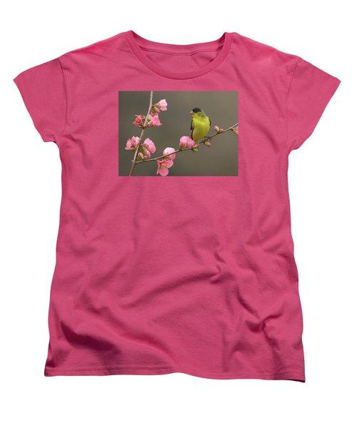 Lesser Goldfinch Women's T-Shirt (Standard Cut) by Doug Herr