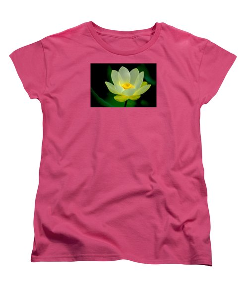 Lotus Blossom Women's T-Shirt (Standard Cut) by Tyson and Kathy Smith