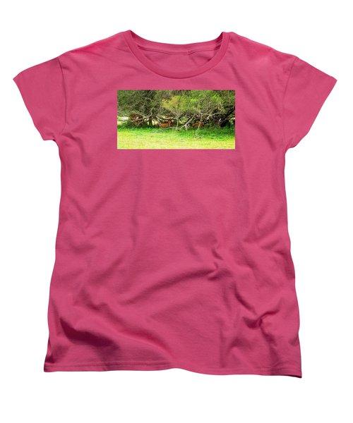 Shelter From The Sun Women's T-Shirt (Standard Cut)
