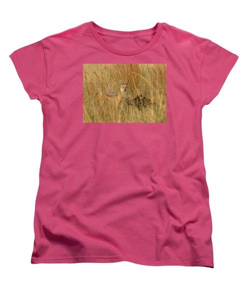 Silver Backed Jackal Women's T-Shirt (Standard Cut) by Patrick Kain