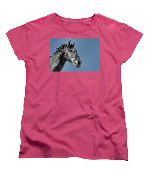 The Stallion Women's T-Shirt (Standard Cut) by Michael Mogensen