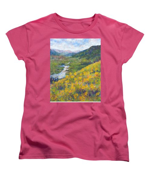 View From Baxters Gulch Women's T-Shirt (Standard Cut) by Becky Chappell