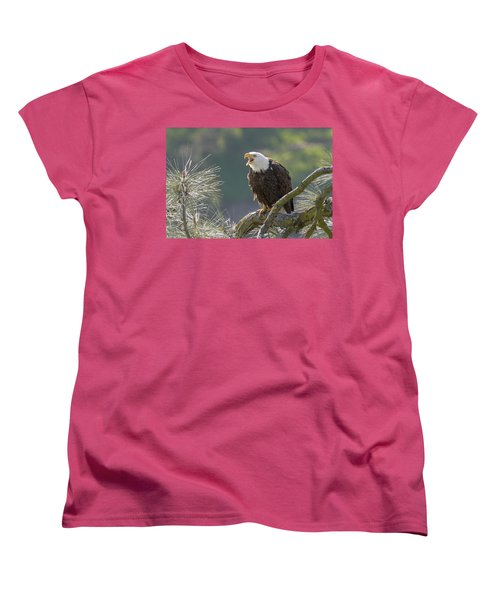 Bald Eagle Women's T-Shirt (Standard Cut) by Doug Herr