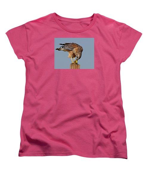 Red Shouldered Hawk Women's T-Shirt (Standard Cut)