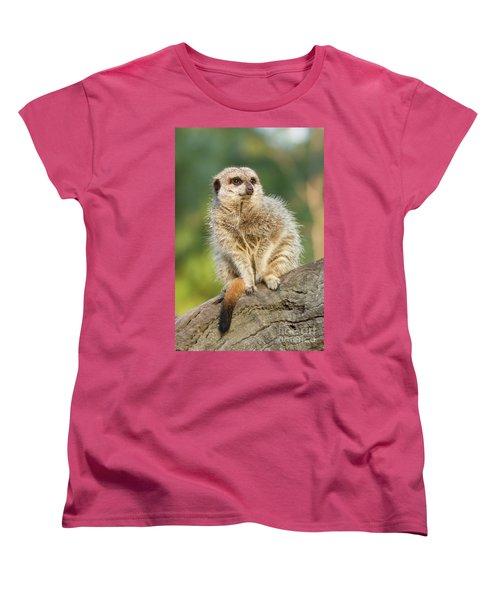 Meerkat Women's T-Shirt (Standard Cut) by Craig Dingle