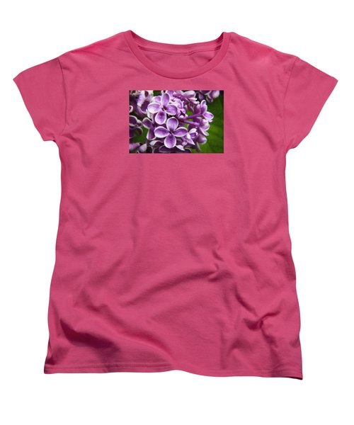 Pink Flowers Women's T-Shirt (Standard Cut) by Andre Faubert