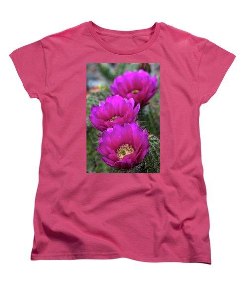 Women's T-Shirt (Standard Cut) featuring the photograph Pink Hedgehog Cactus  by Saija Lehtonen