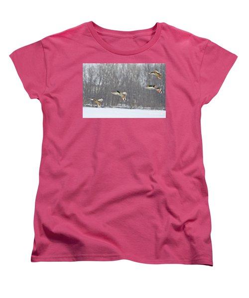 4 In A Row Women's T-Shirt (Standard Cut) by Robert Pearson