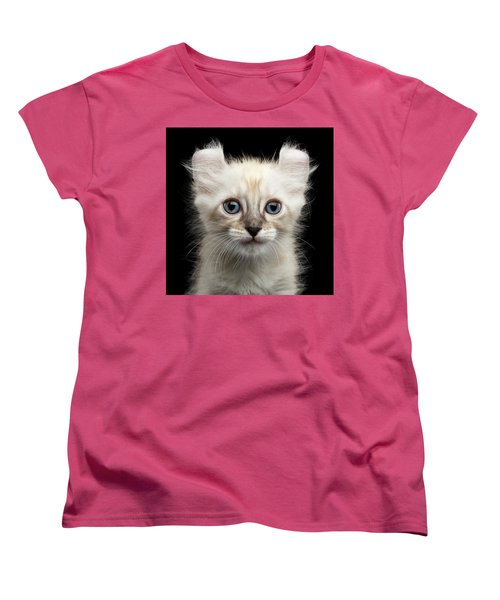 Cute American Curl Kitten With Twisted Ears Isolated Black Background Women's T-Shirt (Standard Cut) by Sergey Taran