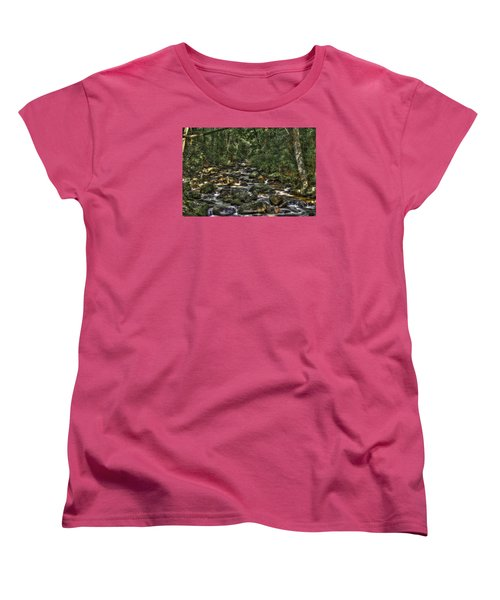 A River Through The Woods Women's T-Shirt (Standard Cut)