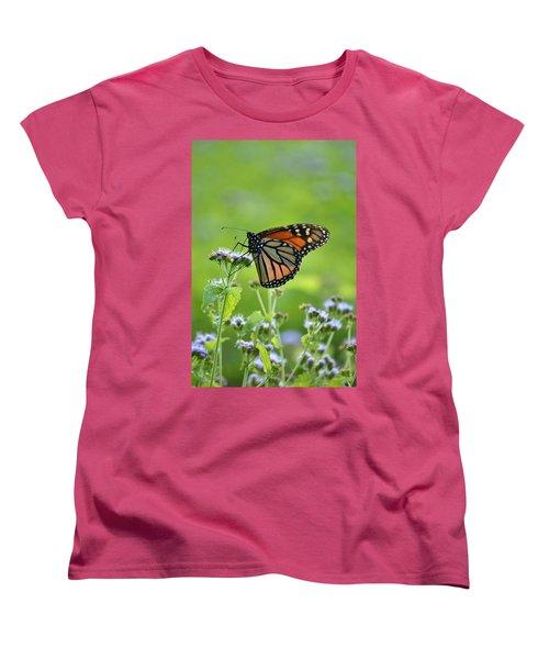 A Sip Of Mist Women's T-Shirt (Standard Cut) by JD Grimes