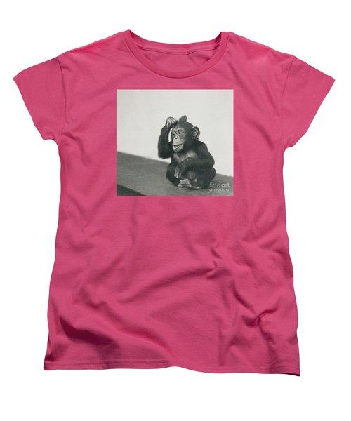 A Young Chimpanzee Playing With A Brush Women's T-Shirt (Standard Cut)