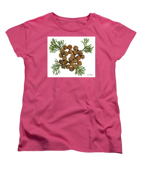 Acorns With Cedar Women's T-Shirt (Standard Cut) by Lise Winne