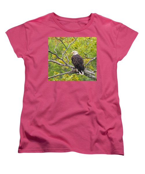 Women's T-Shirt (Standard Cut) featuring the photograph Adult Bald Eagle by Debbie Stahre