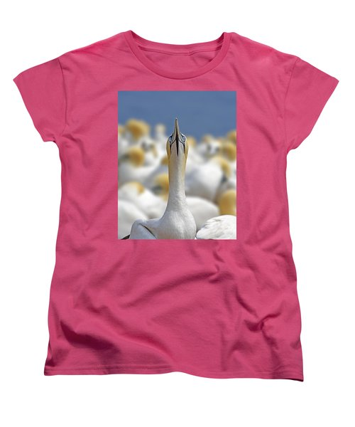 Ahead Women's T-Shirt (Standard Cut) by Tony Beck