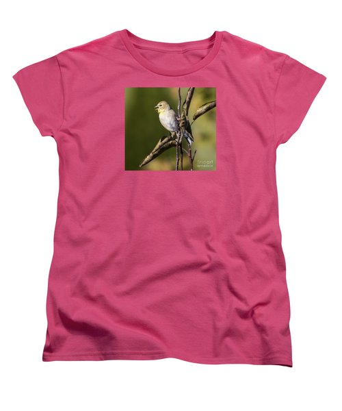 Women's T-Shirt (Standard Cut) featuring the photograph American Goldfinch In Fall Colors  by Ricky L Jones