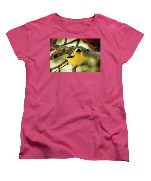 American Goldfinch On Aspen Women's T-Shirt (Standard Cut) by Marilyn Burton