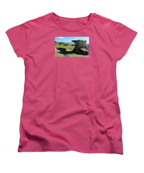 Anvil Rock Women's T-Shirt (Standard Cut) by Nareeta Martin
