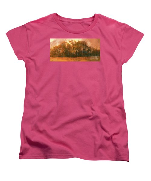 Women's T-Shirt (Standard Cut) featuring the photograph Artistic Fall Colors In The Blue Ridge Fx by Dan Carmichael
