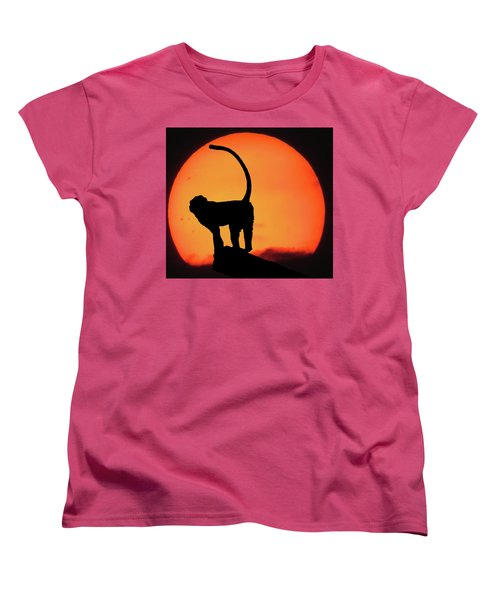 As The Day Ends Women's T-Shirt (Standard Cut)