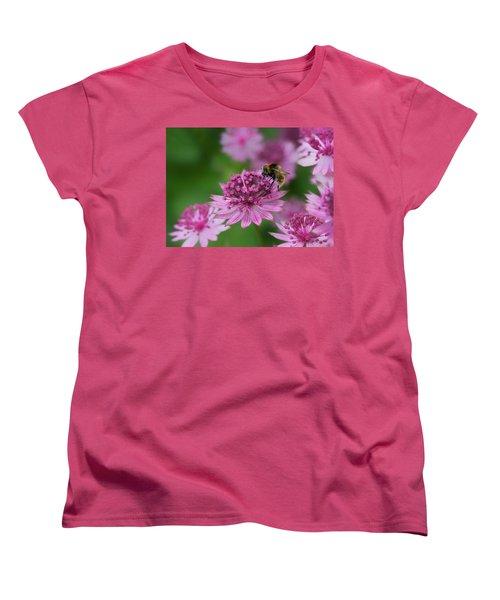 Pollination Women's T-Shirt (Standard Cut) by Shirley Mitchell