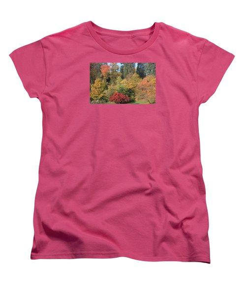 Autumn In Baden Baden Women's T-Shirt (Standard Cut)