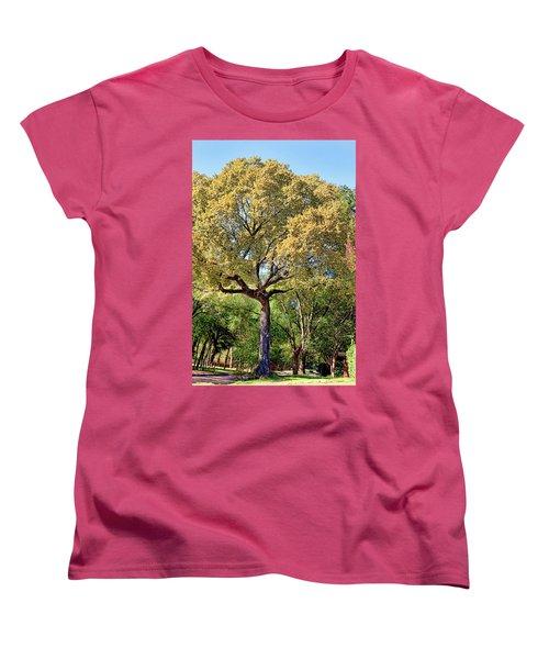Autumn In Summer Women's T-Shirt (Standard Cut) by Joan Bertucci