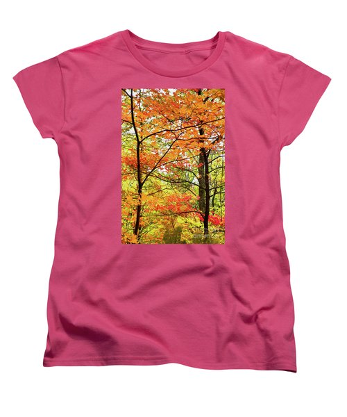 Women's T-Shirt (Standard Cut) featuring the painting Autumn Splendor Fall Colors Leaves And Trees Ap by Dan Carmichael