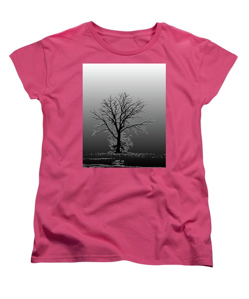 Bare Tree In Fog- Pe Filter Women's T-Shirt (Standard Cut) by Nancy Landry