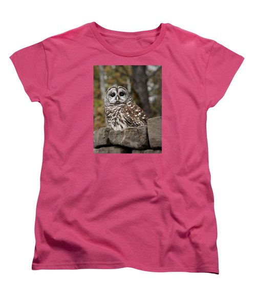 Barred Owl Women's T-Shirt (Standard Cut) by Tyson and Kathy Smith