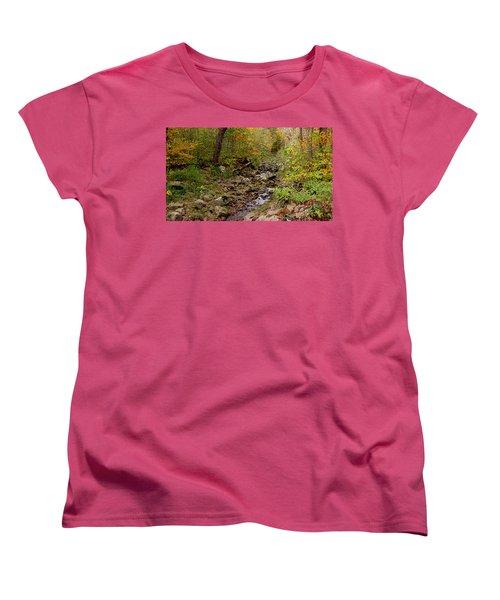 Women's T-Shirt (Standard Cut) featuring the photograph Baxter's Hollow II by Kimberly Mackowski