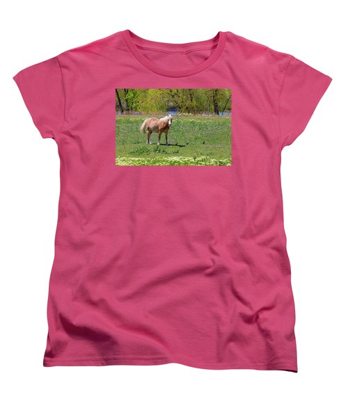 Beautiful Blond Horse And Four Little Birdies Women's T-Shirt (Standard Cut) by James BO Insogna