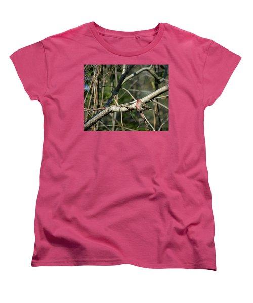 Beautiful Winter Day Women's T-Shirt (Standard Cut) by Cathy Harper