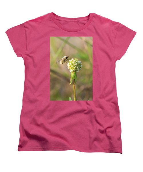 Bee Fly On A Wildflower Women's T-Shirt (Standard Cut) by Christopher L Thomley