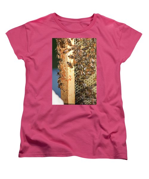 Bee Hive 4 Women's T-Shirt (Standard Cut) by Janie Johnson