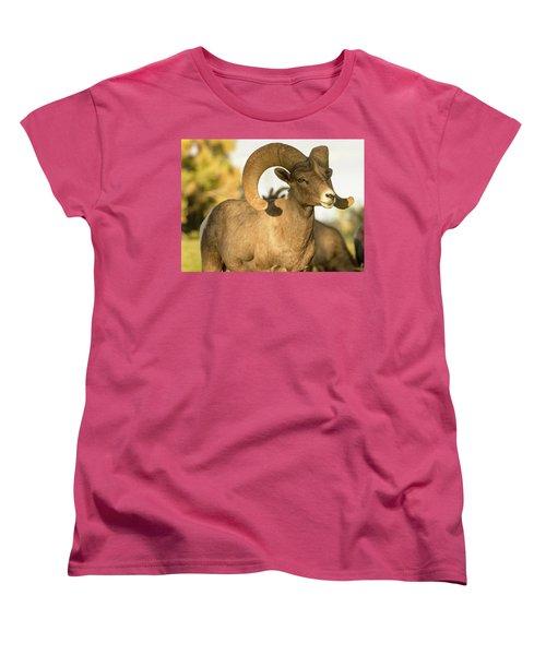Bighorn Ram Women's T-Shirt (Standard Cut) by Scott Warner