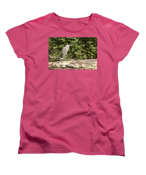 Bird On A Log Women's T-Shirt (Standard Cut) by Ricky Dean