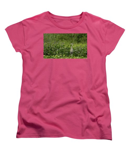 Bird Waiting Women's T-Shirt (Standard Cut) by Mark Minier