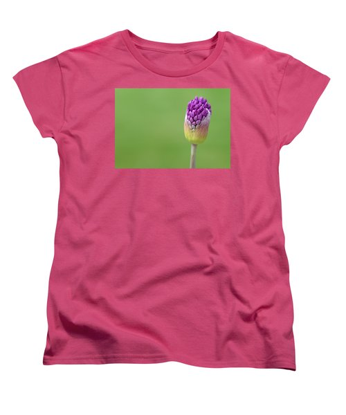 Women's T-Shirt (Standard Cut) featuring the photograph Birthing Springtime by Linda Mishler