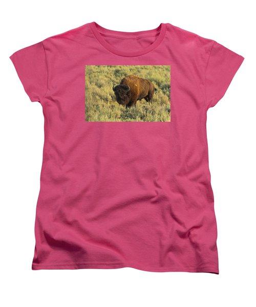 Bison Women's T-Shirt (Standard Cut)