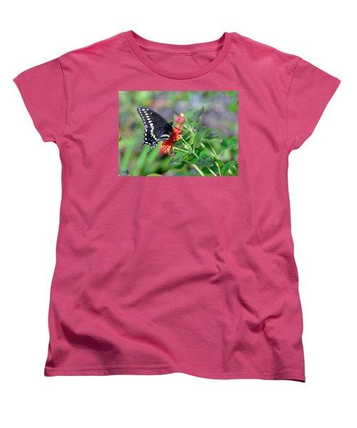 Women's T-Shirt (Standard Cut) featuring the photograph Black Swallowtail by Kay Lovingood