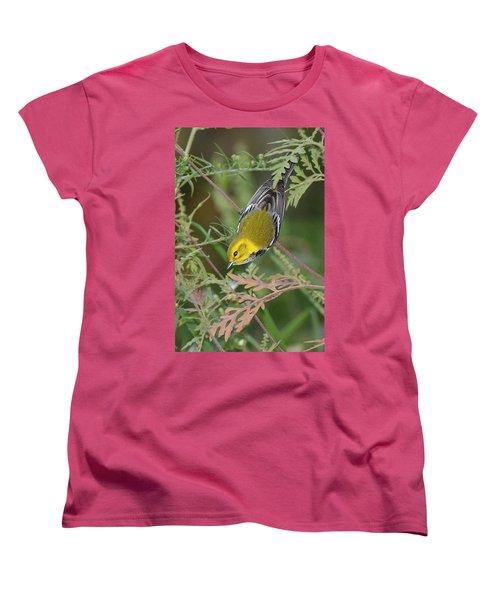 Black-throated Green Intent Women's T-Shirt (Standard Cut) by Alan Lenk